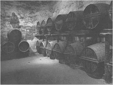 Местное вино рождается и проводит младенчество в гигантских дубовых бочках