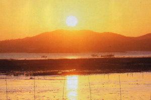 С Востока Южную Корею омывают воды Японского моря, с запада - Желтого моря, а с Юга - Восточно-Китайского моря