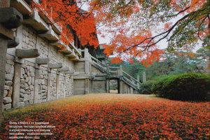 Осень в Корее с ее бодрящим воздухом, чистым голубым небом и изумительными красочными рейзажами - наиболее любимое корейцами время года