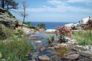 Греция – курорт Икария